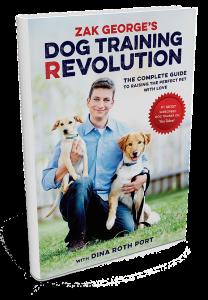 dog-training-rev-image